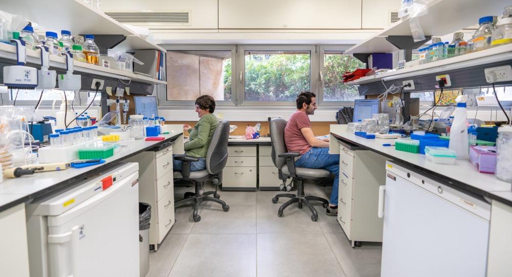 Friedman_lab2